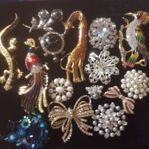 Jewelry - Gorgeous collection of pins for a great deal💖